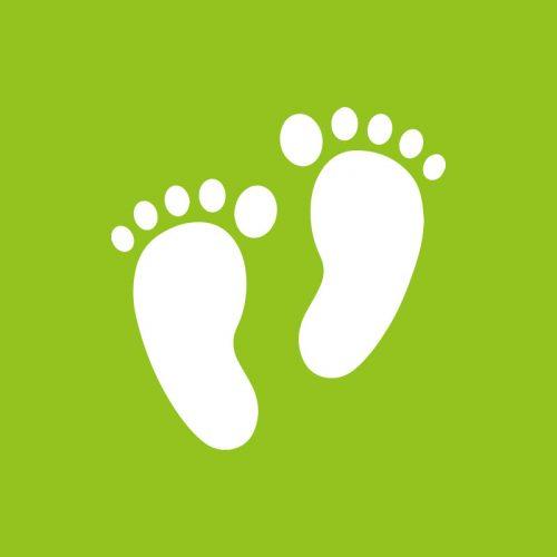 Verde - Casual